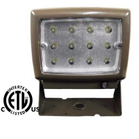 LED FLOOD LIGHT 12 W 110V 6000K BRONZE - LED-012F-BZ-110V
